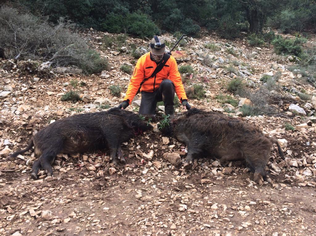 site officiel chasse en France
