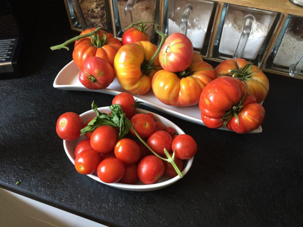 tomates de hamburger éthique